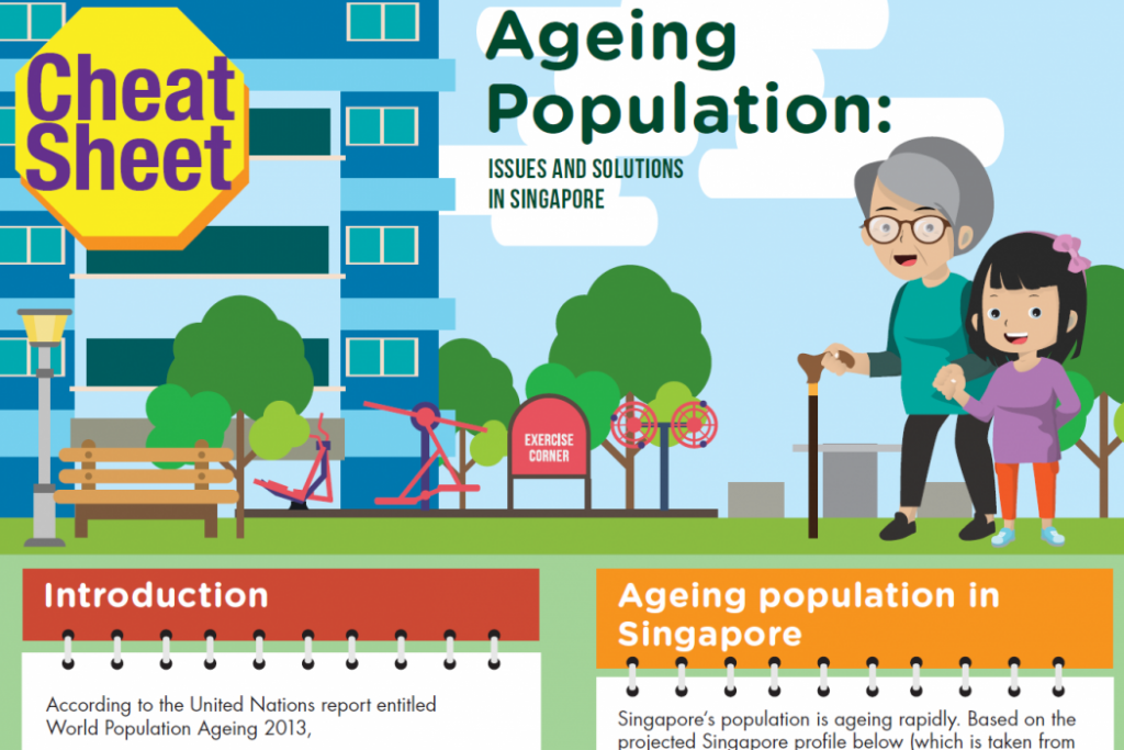 Aging Population Issues in Singapore